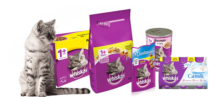 Best Wet Cat Food Uk
